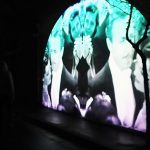 surry hills festival digital projections by Esem Projects